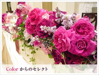 bn_color