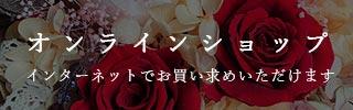 shine_320_48